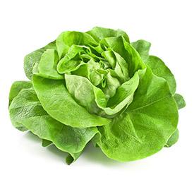 Lettuce - Any Brand