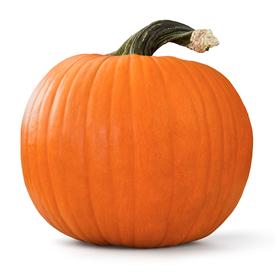 Pumpkin - Any Brand