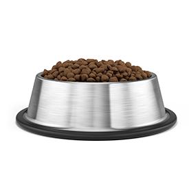 Dry Dog Food - Any Brand